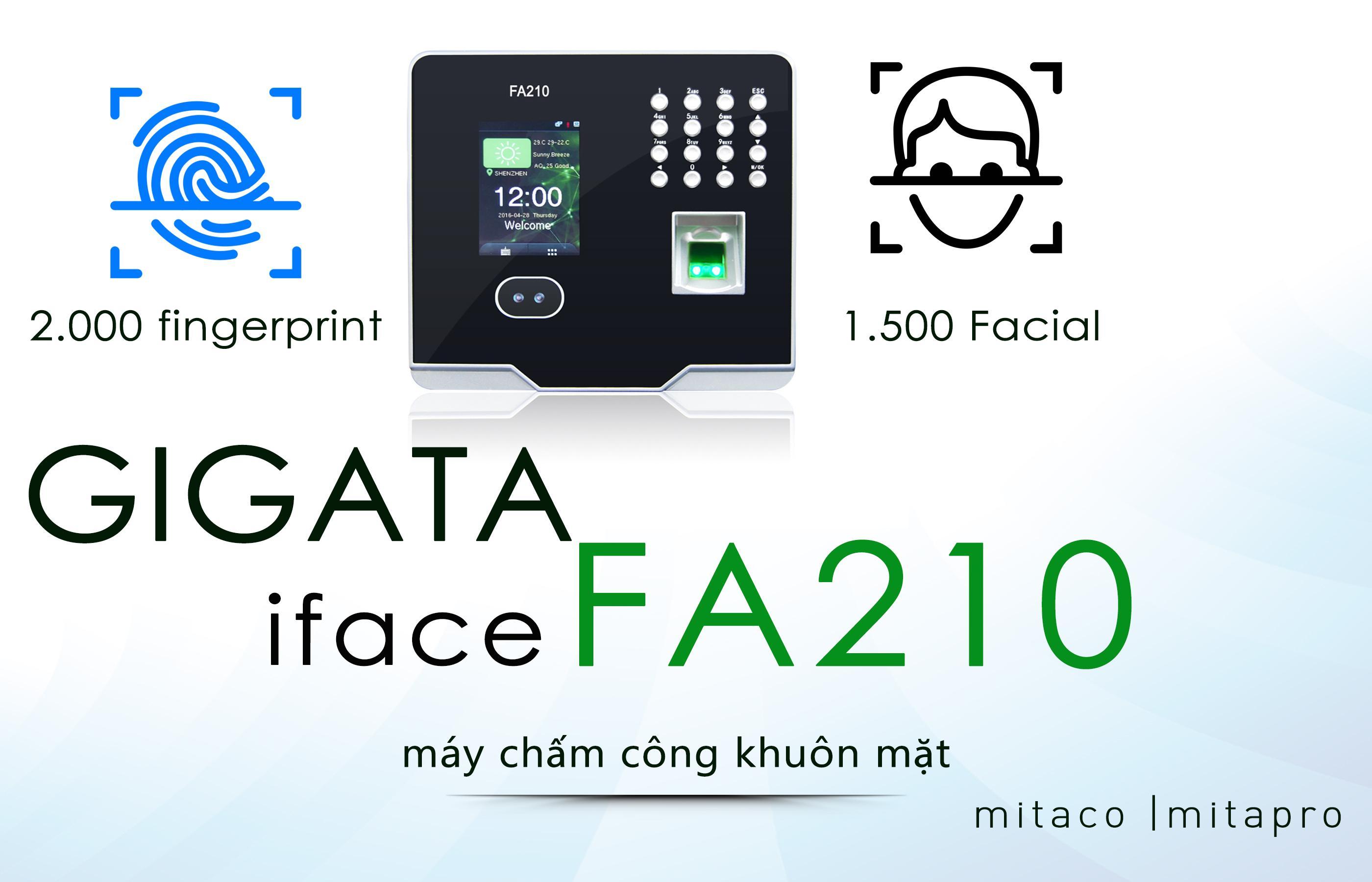 Gigata iFace FA-210